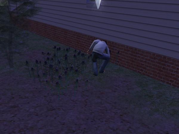 Денис борится с сорняками