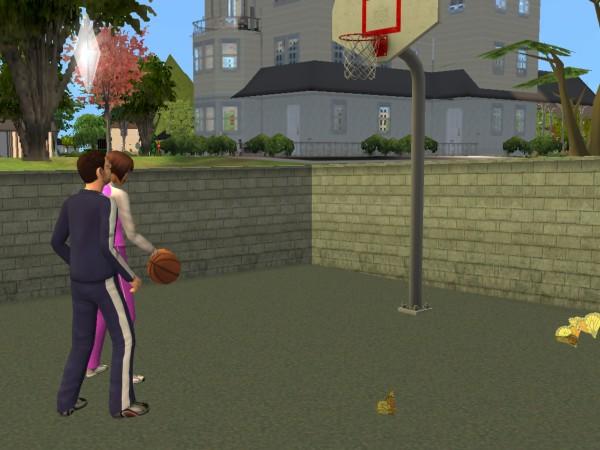 Денис играет в баскетбол.